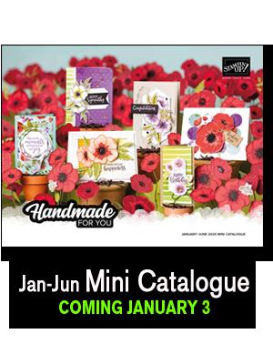 Jan-Jun Mini Catalogue